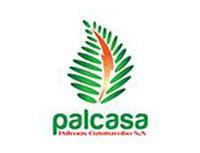 Palcasa